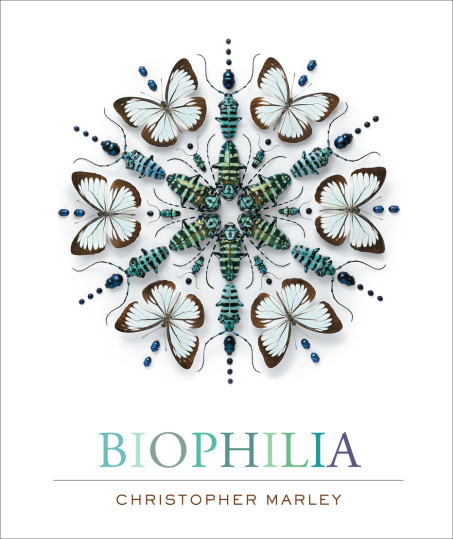 Biophilia Cover Book