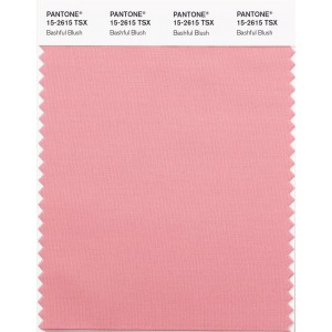 Pantone® SYNTHETIC SWATCH CARDS (TSX/POLYESTER)