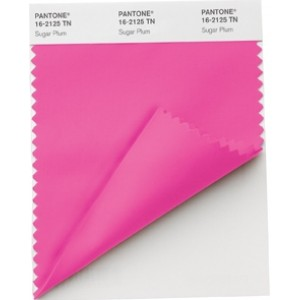 Pantone®  NYLON BRIGHTS SWATCH CARD (TN/NYLON)
